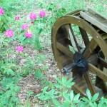 GardenWaterWheel
